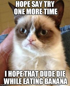 Grumpy Cat Meme | HOPE SAY TRY ONE MORE TIME I HOPE THAT DUDE DIE WHILE EATING BANANA | image tagged in memes,grumpy cat | made w/ Imgflip meme maker