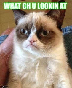 Grumpy Cat Meme | WHAT CH U LOOKIN AT | image tagged in memes,grumpy cat | made w/ Imgflip meme maker