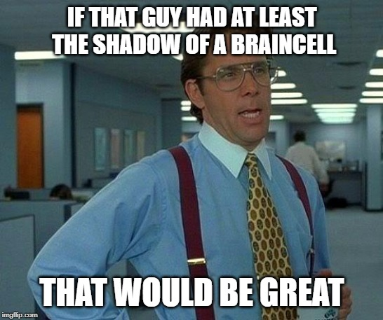 That Would Be Great Meme | IF THAT GUY HAD AT LEAST THE SHADOW OF A BRAINCELL THAT WOULD BE GREAT | image tagged in memes,that would be great | made w/ Imgflip meme maker