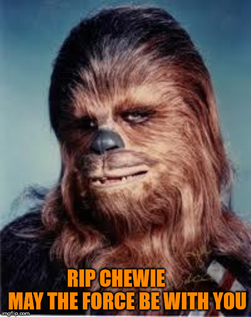 Peter Mayhew actor behind Chewbacca passed at age 74 |  RIP CHEWIE      MAY THE FORCE BE WITH YOU | image tagged in chewbacca,peter mayhew,star wars | made w/ Imgflip meme maker