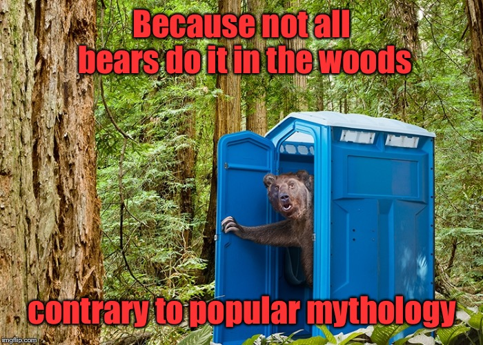 And now you have the truth | Because not all bears do it in the woods contrary to popular mythology | image tagged in outhouse bear,woods,crap,myth,funny memes | made w/ Imgflip meme maker