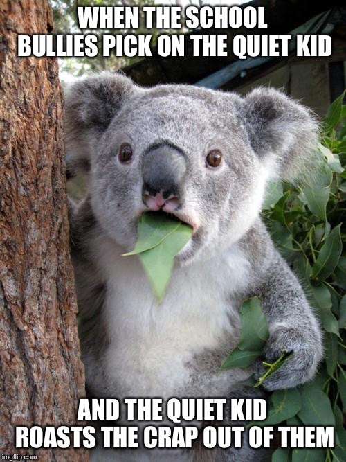 Surprised Koala |  WHEN THE SCHOOL BULLIES PICK ON THE QUIET KID; AND THE QUIET KID ROASTS THE CRAP OUT OF THEM | image tagged in memes,surprised koala | made w/ Imgflip meme maker