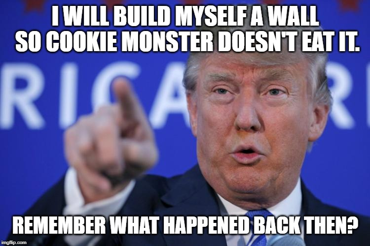 I will build a wall | I WILL BUILD MYSELF A WALL SO COOKIE MONSTER DOESN'T EAT IT. REMEMBER WHAT HAPPENED BACK THEN? | image tagged in i will build a wall | made w/ Imgflip meme maker