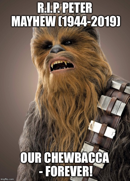 In memory of the one and only Chewbacca |  R.I.P. PETER MAYHEW (1944-2019); OUR CHEWBACCA - FOREVER! | image tagged in star wars,chewbacca | made w/ Imgflip meme maker