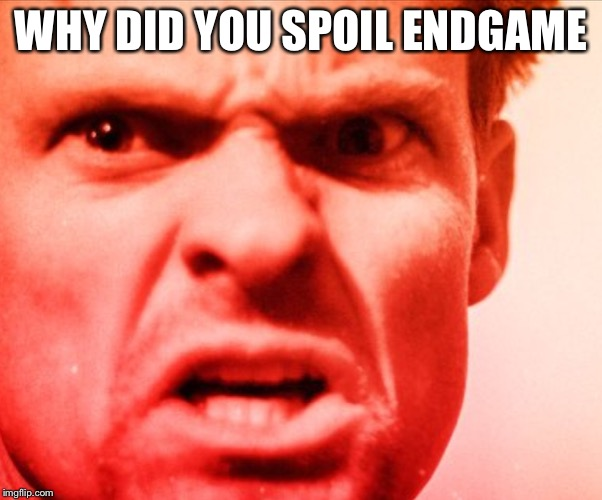 WHY DID YOU SPOIL ENDGAME | image tagged in angry man | made w/ Imgflip meme maker
