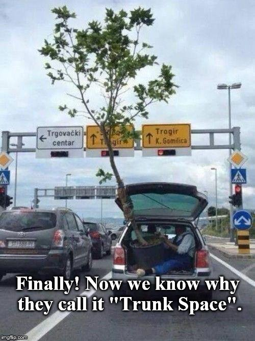 "Whatever Works. | Finally! Now we know why they call it ""Trunk Space"". 