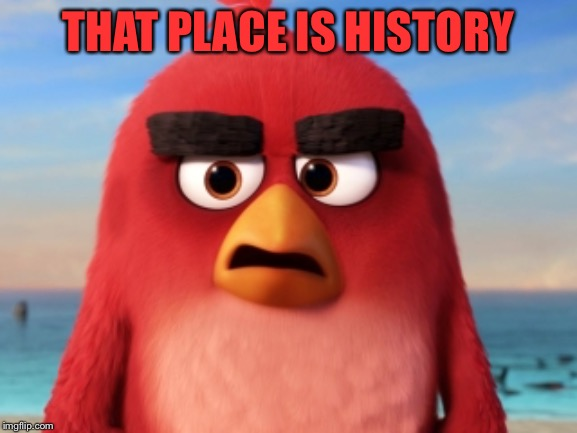 Angry Birds | THAT PLACE IS HISTORY | image tagged in angry birds | made w/ Imgflip meme maker