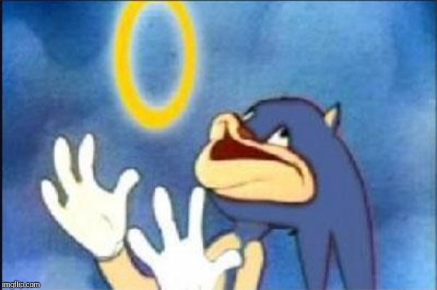 Sonic derp | image tagged in sonic derp | made w/ Imgflip meme maker