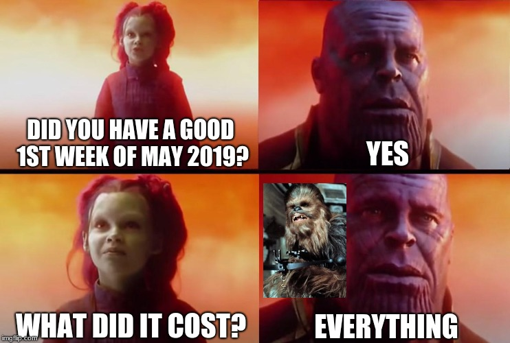 thanos what did it cost | DID YOU HAVE A GOOD 1ST WEEK OF MAY 2019? YES WHAT DID IT COST? EVERYTHING | image tagged in thanos what did it cost | made w/ Imgflip meme maker