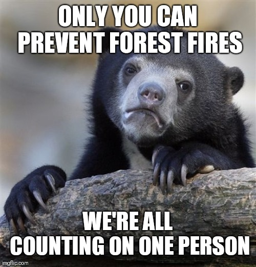 Confession Bear | ONLY YOU CAN PREVENT FOREST FIRES WE'RE ALL COUNTING ON ONE PERSON | image tagged in memes,confession bear,smokey the bear,fire,safety,guess i'll die | made w/ Imgflip meme maker