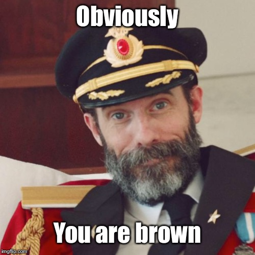 Captain Obvious | Obviously You are brown | image tagged in captain obvious | made w/ Imgflip meme maker