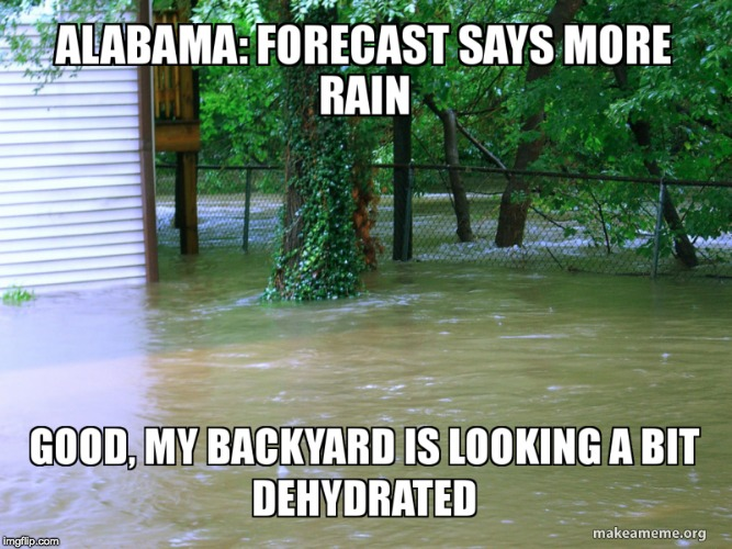 Alabama Flooding | image tagged in alabama,flooding,backyard,water,flooded,funny | made w/ Imgflip meme maker