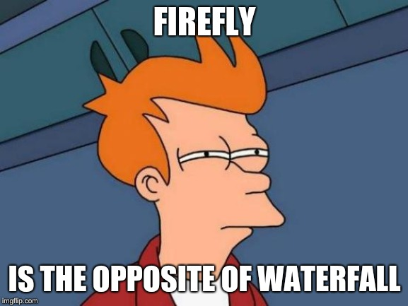 Futurama Fry Meme | FIREFLY IS THE OPPOSITE OF WATERFALL | image tagged in memes,futurama fry | made w/ Imgflip meme maker