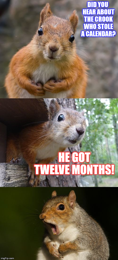 At least no time was wasted... | DID YOU HEAR ABOUT THE CROOK WHO STOLE A CALENDAR? HE GOT TWELVE MONTHS! | image tagged in bad pun squirrel,funny,memes,robbery,calendar,year | made w/ Imgflip meme maker