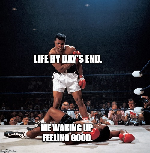 Life. | LIFE BY DAY'S END. ME WAKING UP FEELING GOOD. | image tagged in life,comedy,satire | made w/ Imgflip meme maker