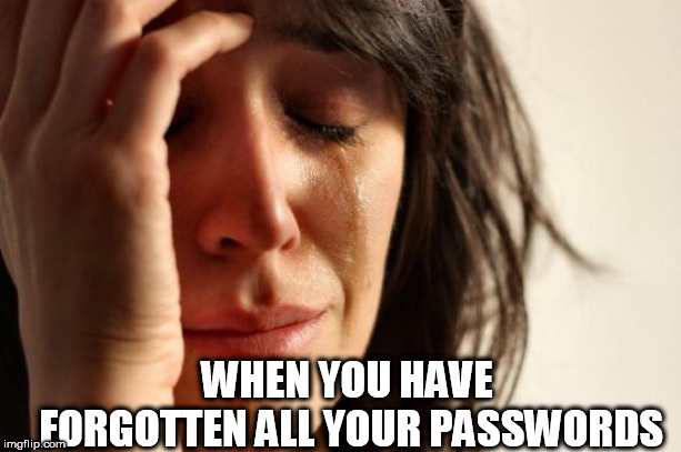 First World Problems Meme |  WHEN YOU HAVE FORGOTTEN ALL YOUR PASSWORDS | image tagged in memes,first world problems | made w/ Imgflip meme maker