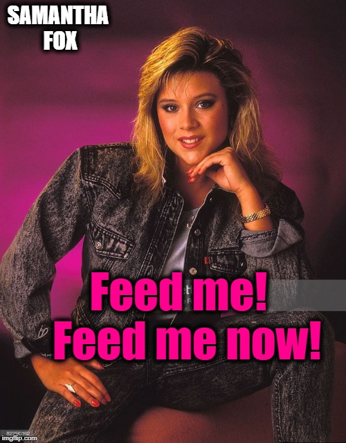 SAMANTHA FOX Feed me!  Feed me now! | made w/ Imgflip meme maker
