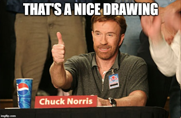 Chuck Norris Approves Meme | THAT'S A NICE DRAWING | image tagged in memes,chuck norris approves,chuck norris | made w/ Imgflip meme maker