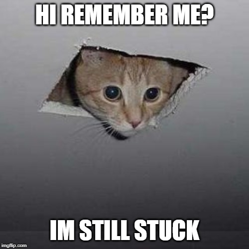 Ceiling Cat | HI REMEMBER ME? IM STILL STUCK | image tagged in memes,ceiling cat | made w/ Imgflip meme maker