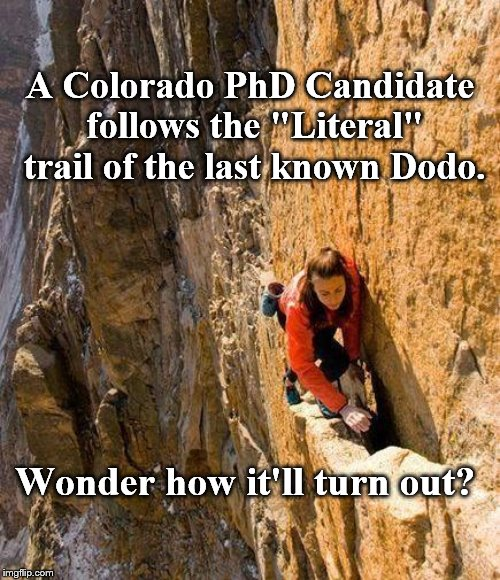 "Can you really be this stupid? |  A Colorado PhD Candidate follows the ""Literal"" trail of the last known Dodo. Wonder how it'll turn out? 