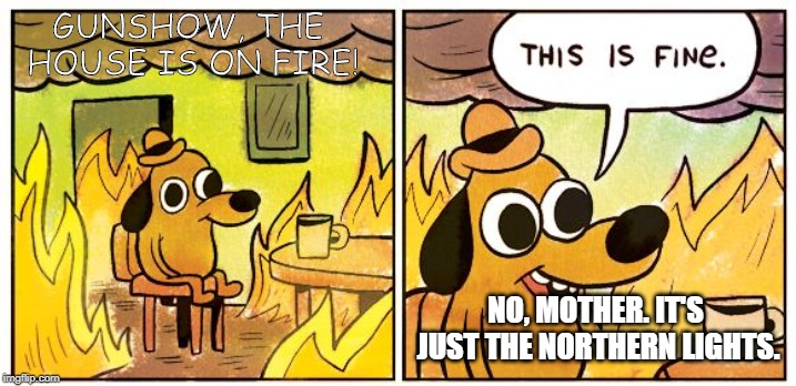 This is fine dog | GUNSHOW, THE HOUSE IS ON FIRE! NO, MOTHER. IT'S JUST THE NORTHERN LIGHTS. | image tagged in this is fine dog | made w/ Imgflip meme maker