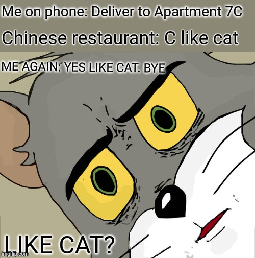 Hope I didn't order what I think | Me on phone: Deliver to Apartment 7C Chinese restaurant: C like cat ME AGAIN: YES LIKE CAT. BYE LIKE CAT? | image tagged in unsettled tom,chinese food | made w/ Imgflip meme maker
