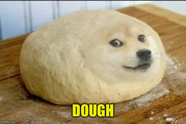 dough doge | DOUGH | image tagged in dough doge | made w/ Imgflip meme maker