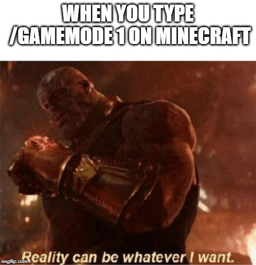 Reality can be whatever I want. | WHEN YOU TYPE /GAMEMODE 1 ON MINECRAFT | image tagged in reality can be whatever i want | made w/ Imgflip meme maker