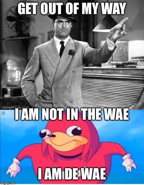 GET OUT OF MY WAY I AM DE WAE I AM NOT IN THE WAE | image tagged in get out | made w/ Imgflip meme maker