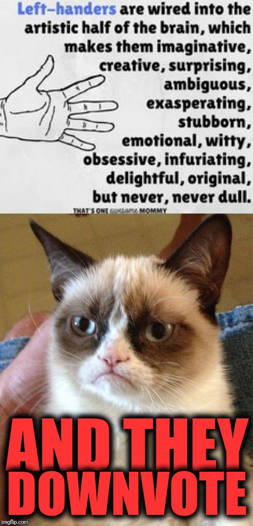AND THEY DOWNVOTE | image tagged in memes,grumpy cat | made w/ Imgflip meme maker