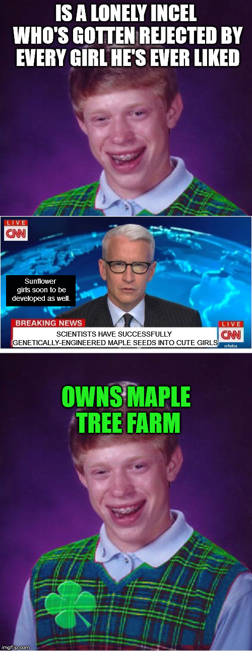 IS A LONELY INCEL WHO'S GOTTEN REJECTED BY EVERY GIRL HE'S EVER LIKED OWNS MAPLE TREE FARM SCIENTISTS HAVE SUCCESSFULLY GENETICALLY-ENGINEER | image tagged in good luck brian,cnn breaking news anderson cooper,seeds,cnn | made w/ Imgflip meme maker