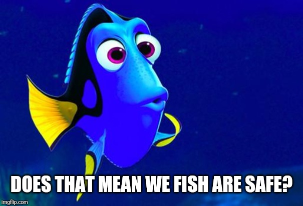 Bad Memory Fish | DOES THAT MEAN WE FISH ARE SAFE? | image tagged in bad memory fish | made w/ Imgflip meme maker