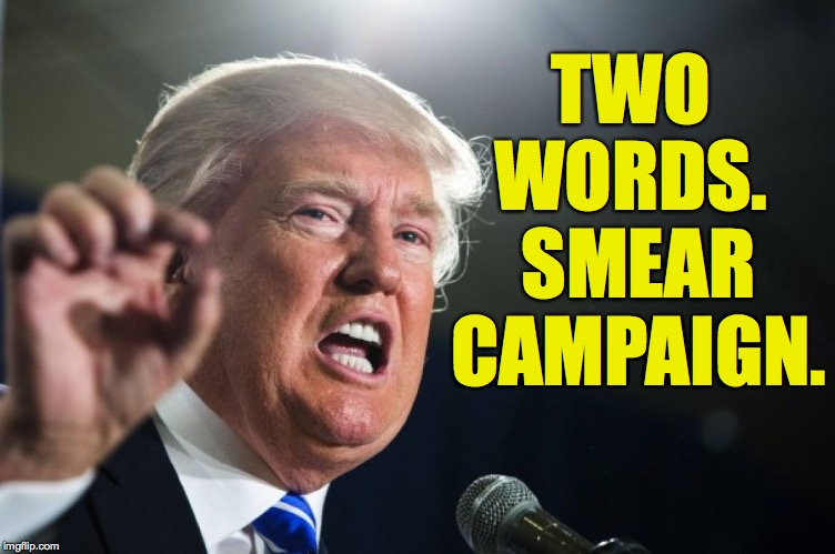 donald trump | TWO WORDS.  SMEAR CAMPAIGN. | image tagged in donald trump | made w/ Imgflip meme maker