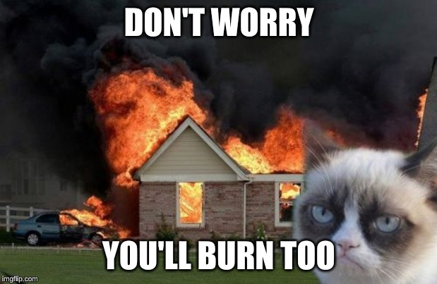 Burn Kitty Meme | DON'T WORRY YOU'LL BURN TOO | image tagged in memes,burn kitty,grumpy cat | made w/ Imgflip meme maker