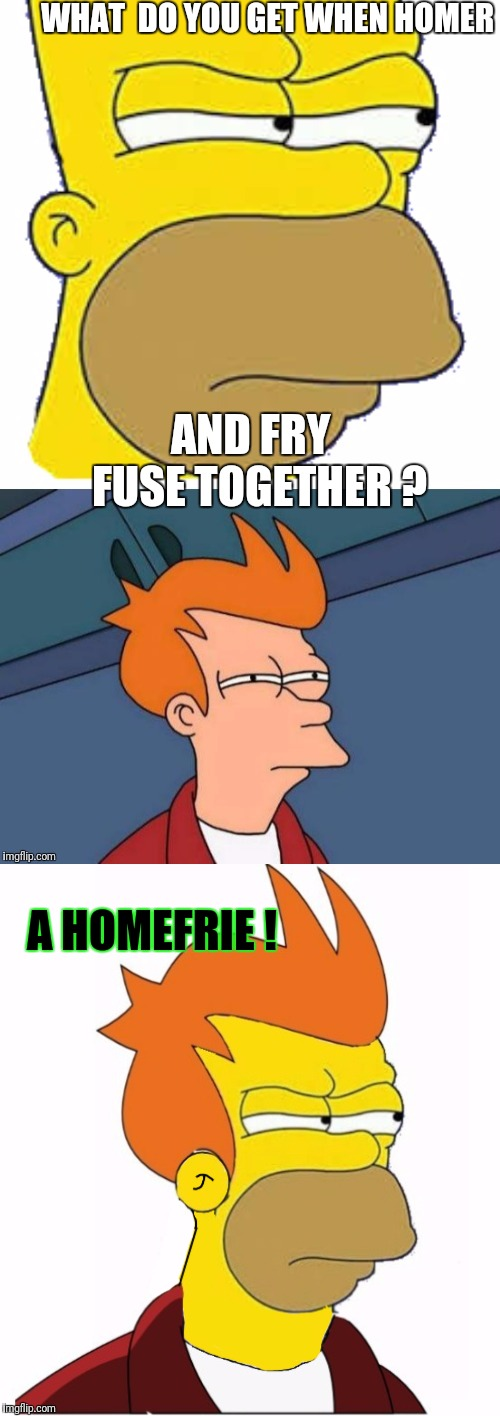 Fusion | WHAT  DO YOU GET WHEN HOMER AND FRY  FUSE TOGETHER ? A HOMEFRIE ! | image tagged in the simpsons,futurama fry,memes,funny,dragonballz | made w/ Imgflip meme maker