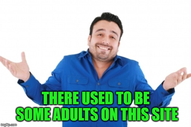THERE USED TO BE SOME ADULTS ON THIS SITE | made w/ Imgflip meme maker