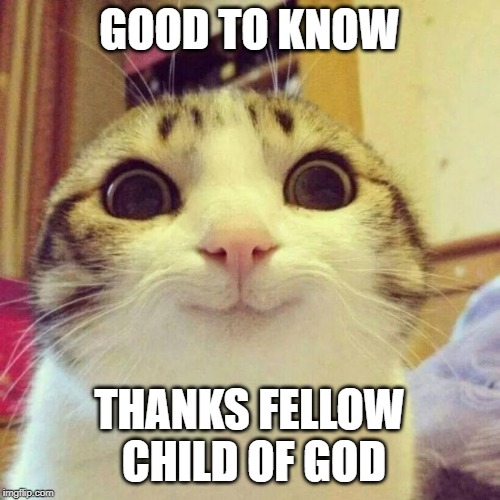 GOOD TO KNOW THANKS FELLOW CHILD OF GOD | image tagged in memes,smiling cat | made w/ Imgflip meme maker