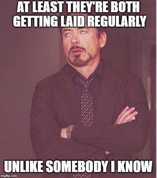 AT LEAST THEY'RE BOTH GETTING LAID REGULARLY UNLIKE SOMEBODY I KNOW | image tagged in memes,face you make robert downey jr | made w/ Imgflip meme maker