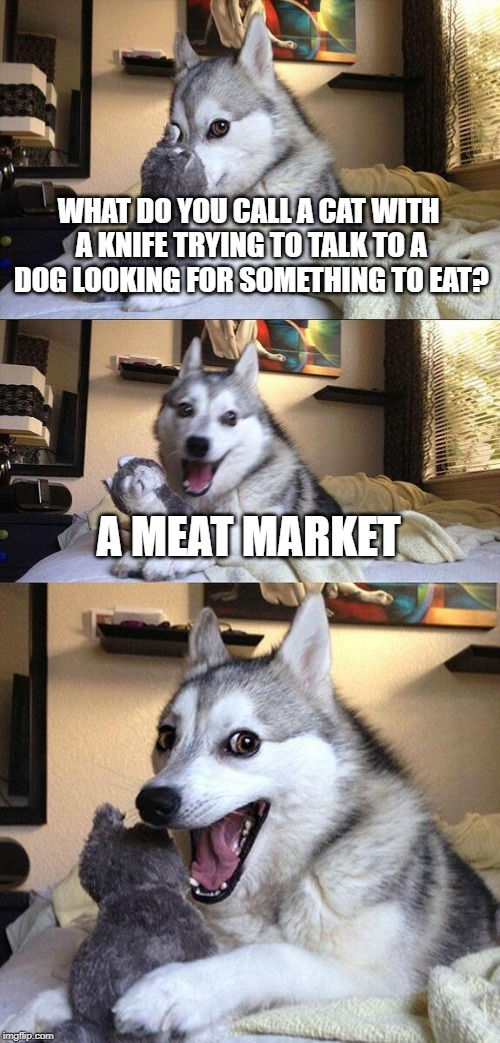 WHAT DO YOU CALL A CAT WITH A KNIFE TRYING TO TALK TO A DOG LOOKING FOR SOMETHING TO EAT? A MEAT MARKET | image tagged in memes,bad pun dog | made w/ Imgflip meme maker