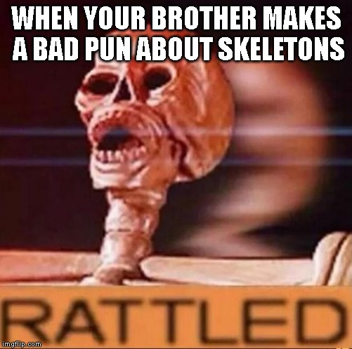 NEYH! | WHEN YOUR BROTHER MAKES A BAD PUN ABOUT SKELETONS | image tagged in rattled,undertale,papyrus,sans | made w/ Imgflip meme maker