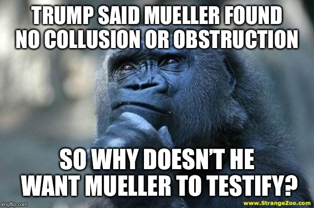 Deep Thoughts |  TRUMP SAID MUELLER FOUND NO COLLUSION OR OBSTRUCTION; SO WHY DOESN'T HE WANT MUELLER TO TESTIFY? | image tagged in deep thoughts | made w/ Imgflip meme maker