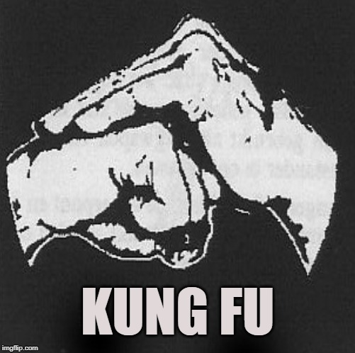 Sign of Respect | KUNG FU | image tagged in kung fu,hand shake,martial arts,salute,tao,sun and moon | made w/ Imgflip meme maker