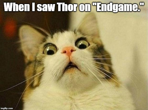 "Scared Cat Meme | When I saw Thor on ""Endgame."" 