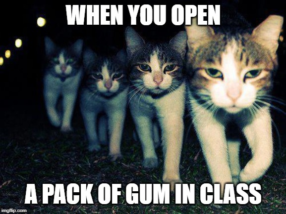 Wrong Neighboorhood Cats | WHEN YOU OPEN A PACK OF GUM IN CLASS | image tagged in memes,wrong neighboorhood cats | made w/ Imgflip meme maker
