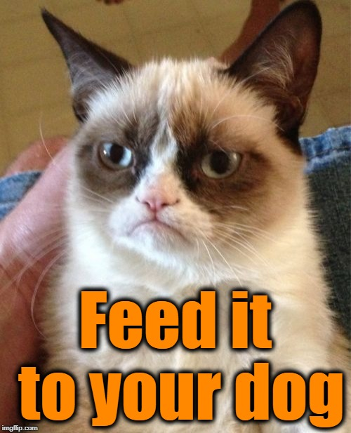 Grumpy Cat Meme | Feed it to your dog | image tagged in memes,grumpy cat | made w/ Imgflip meme maker