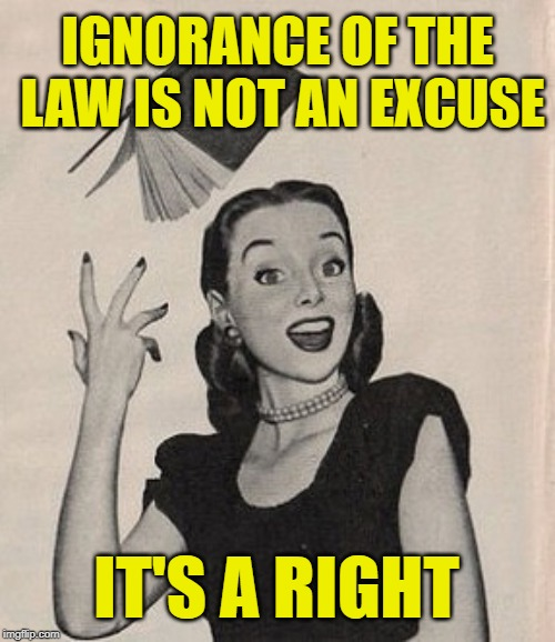 Sassy Outlaw Rights | IGNORANCE OF THE LAW IS NOT AN EXCUSE IT'S A RIGHT | image tagged in throwing book vintage woman,laws,ignorance,rights,funny memes,outlaws | made w/ Imgflip meme maker