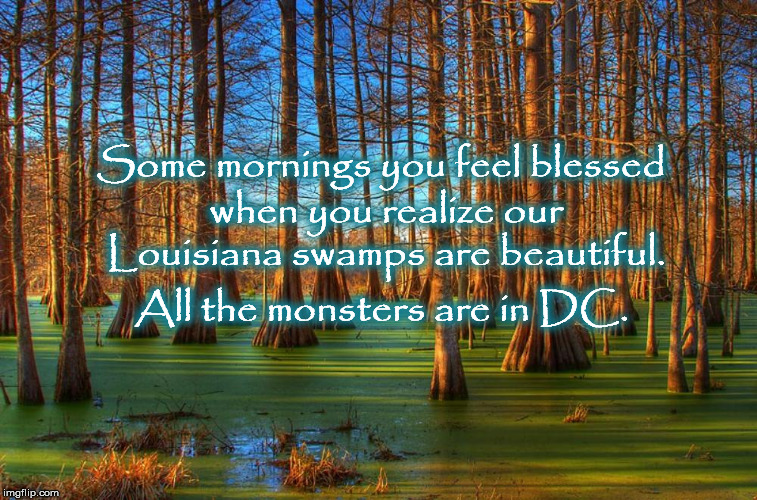 Some mornings you feel blessed when you realize our Louisiana swamps are beautiful. All the monsters are in DC. | image tagged in drain the swamp,washington dc,mega,republican,corruption,drain the swamp trump | made w/ Imgflip meme maker