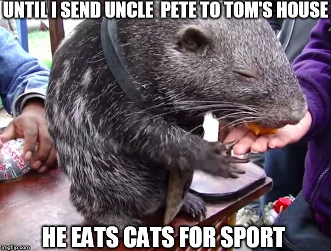 UNTIL I SEND UNCLE  PETE TO TOM'S HOUSE HE EATS CATS FOR SPORT | made w/ Imgflip meme maker