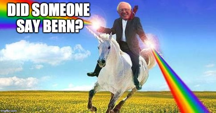 Bernie Sanders on magical unicorn | DID SOMEONE SAY BERN? | image tagged in bernie sanders on magical unicorn | made w/ Imgflip meme maker