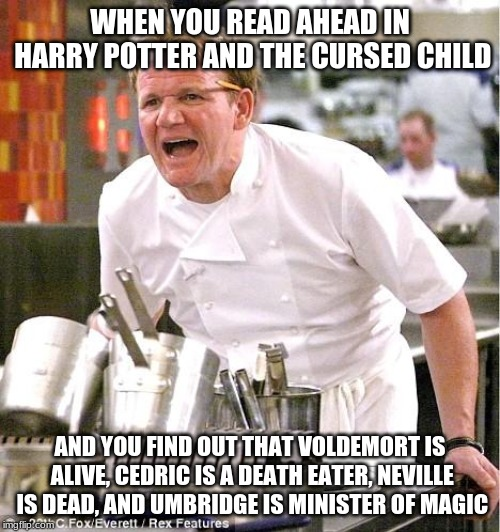 Chef Gordon Ramsay Meme | WHEN YOU READ AHEAD IN HARRY POTTER AND THE CURSED CHILD AND YOU FIND OUT THAT VOLDEMORT IS ALIVE, CEDRIC IS A DEATH EATER, NEVILLE IS DEAD, | image tagged in memes,chef gordon ramsay | made w/ Imgflip meme maker